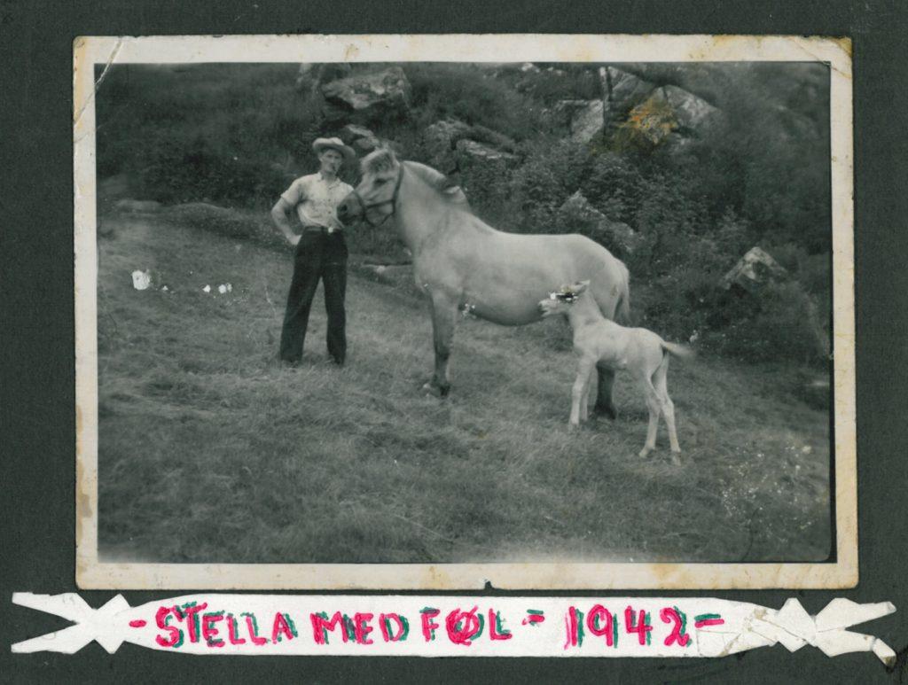 Stella_1942